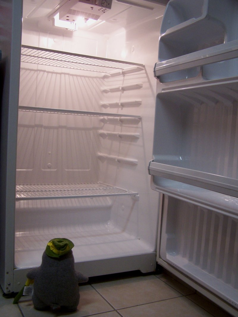 3empty_fridge