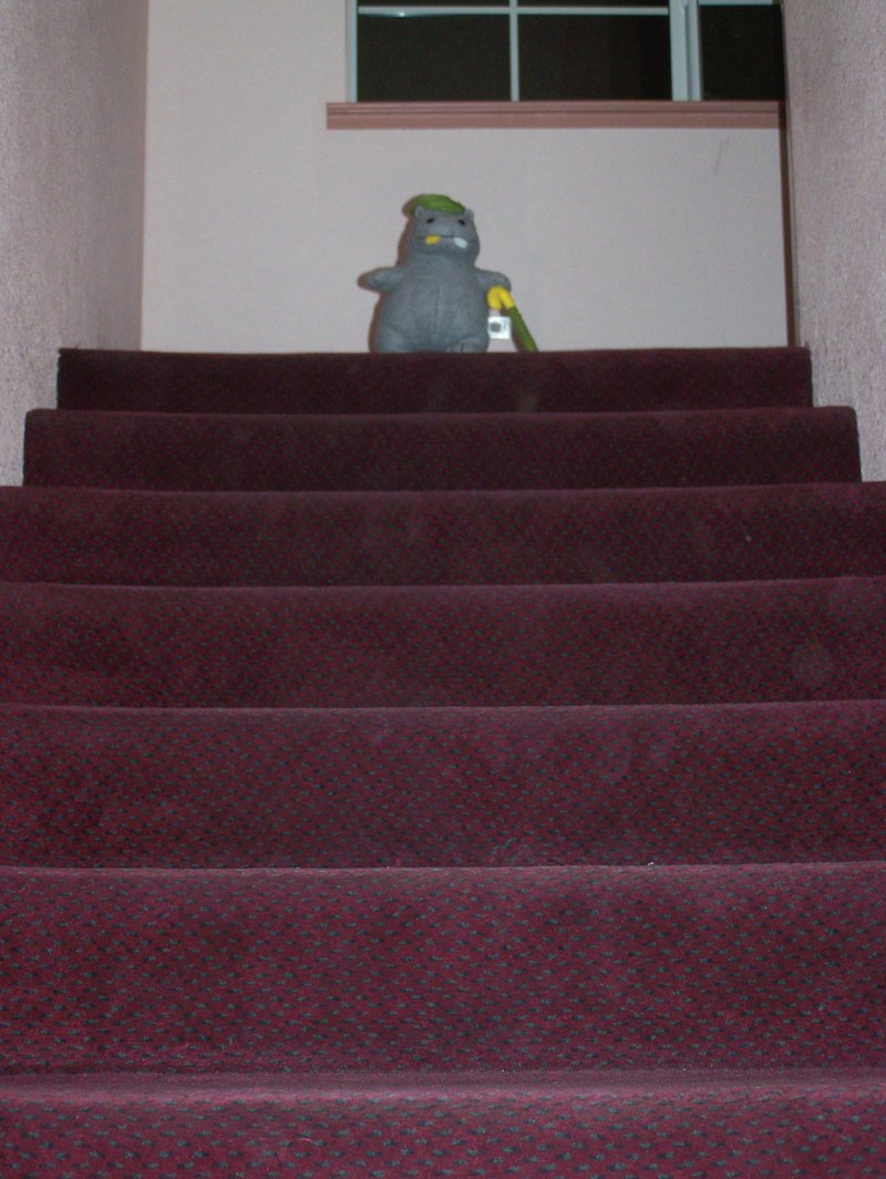 8stairs