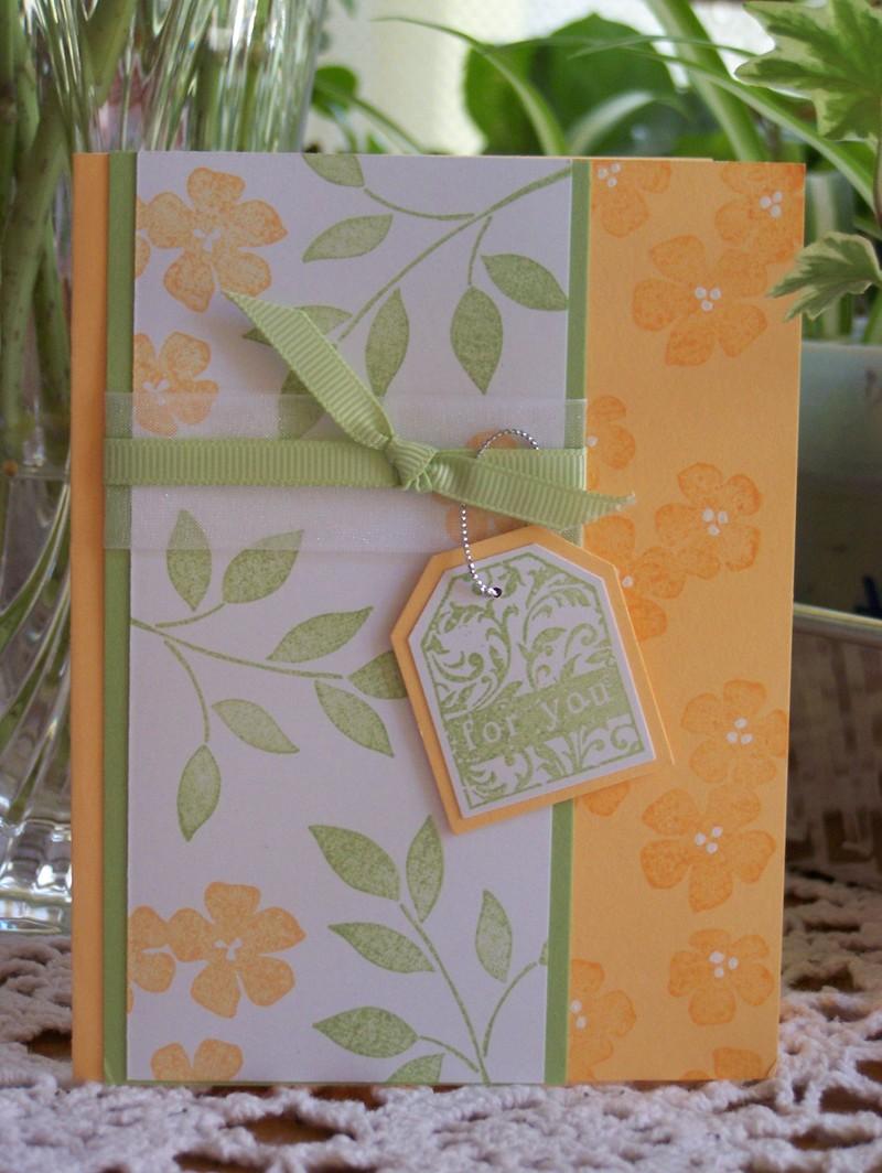 Apricot_blossoms